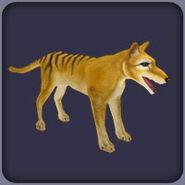 Thylacine (Blue Fang)