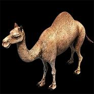 AoE2DE ingame camel icon