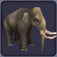 Dwarf Sicilian Elephant (Blue Fang)
