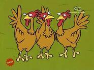 EEnE Chickens