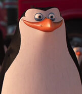 Rico in Penguins Of Madagascar