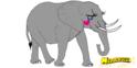 Sheena the Elephant
