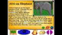 BTKB African Elephant