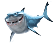 Bruce (Shark)