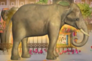 Little Einsteins Indian Elephant