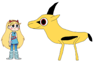 Star meets Chinkara