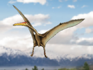 Dm quetzalcoatlus