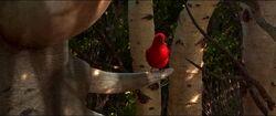 Good-dinosaur-disneyscreencaps.com-4166.jpg