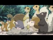 JEL Turtle and Hedgehog