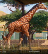 Planet Zoo Giraffe