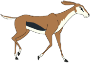 Tina the Thomson's Gazelle