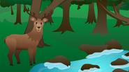 123ABCTV Deer