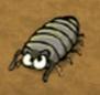 Grey insect in hugo lek och lar 1 den magiska eken