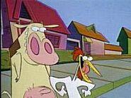 Mrs-cow-chicken-04