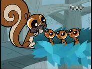 PPG squirrels