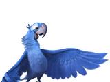 List of Species in Blue Sky Media