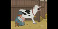 Family Guy Cow