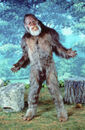 Harry Bigfoot
