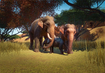 Indian-elephant-planet-zoo