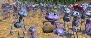 The-bugs-life-disneyscreencaps.com-10236