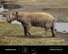 Uintatherium-Leidy-738x591.jpg