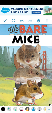 We Bare Mice Poster.png