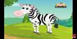 Appu Zebra