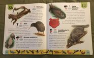 Endangered Animals Dictionary (13)