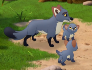 TLG Foxes