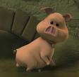 Tutu (The Wonderful Wizard of Ha's)