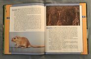 Scholastic Encyclopedia Of Animals (20)