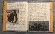 Scholastic Encyclopedia Of Animals (22)