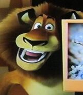 Alex in Madagascar Animal Trivia DVD Game
