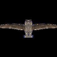 Eurasian Eagle Owl (ZTABC)