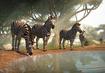 Plains-zebra-planet-zoo