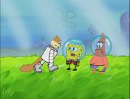 Spongebob tells poor sandy