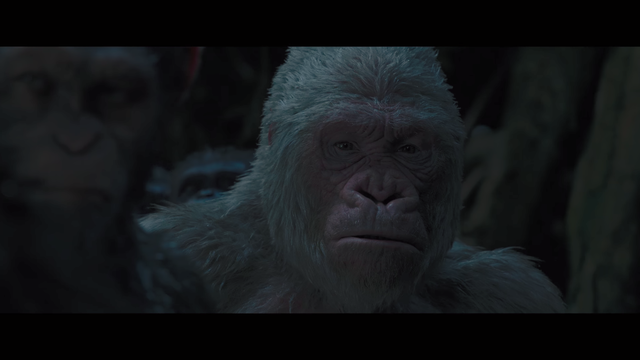 Winter (Planet of the Apes)