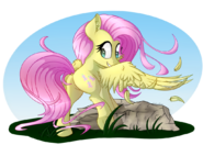 What are you looking at by sentireaeris dbdb7kq-fullview