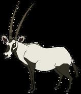 Arry the Arabian Oryx