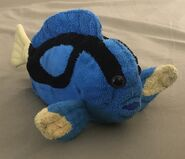 Clara the Blue Tang