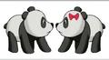 Pandas From Company Idiot