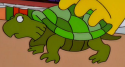 Simpsons Turtle.png