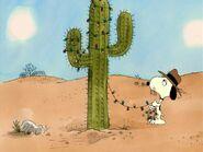 Spike decorating his cactus