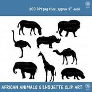 Are You a Mouse a Dog a Zebra or an Elephant