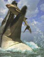 Basilosaurus kill shark