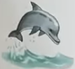 Dolphin usborne my first thousand words
