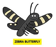 Emmett's ABC Book Zebra Butterfly