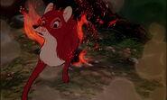 Fox-and-the-hound-disneyscreencaps.com-8428