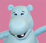 Harry Hippo