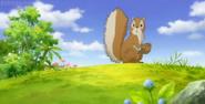 JEL Squirrel